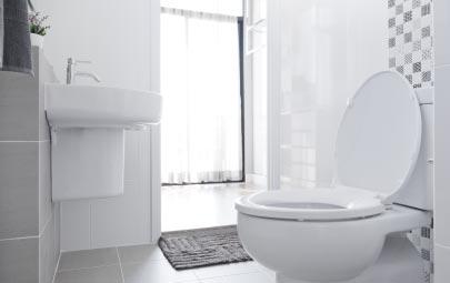 Aprende cómo eliminar los olores del baño