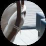 5 razones para tener sillas colgantes